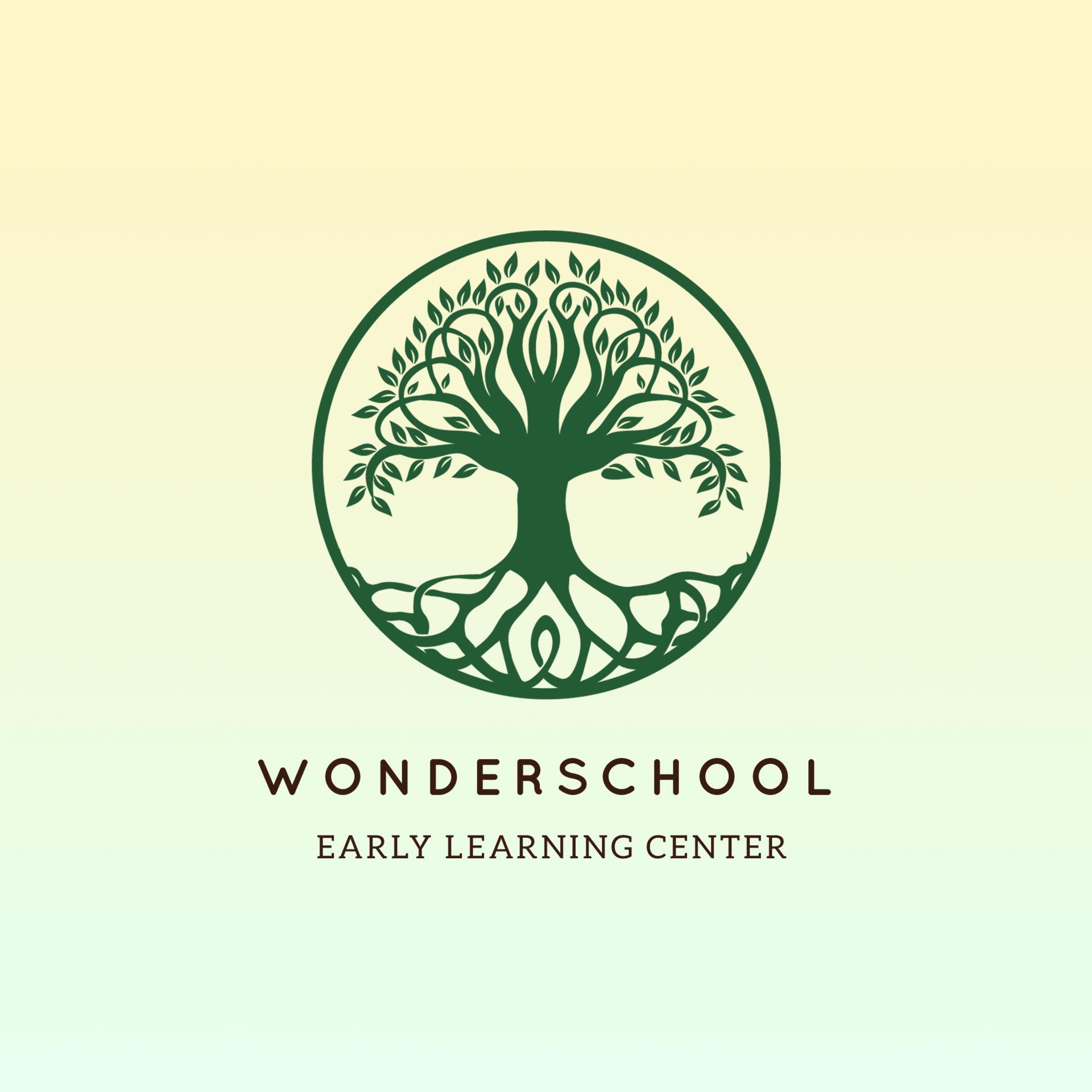 Wonder Share School
